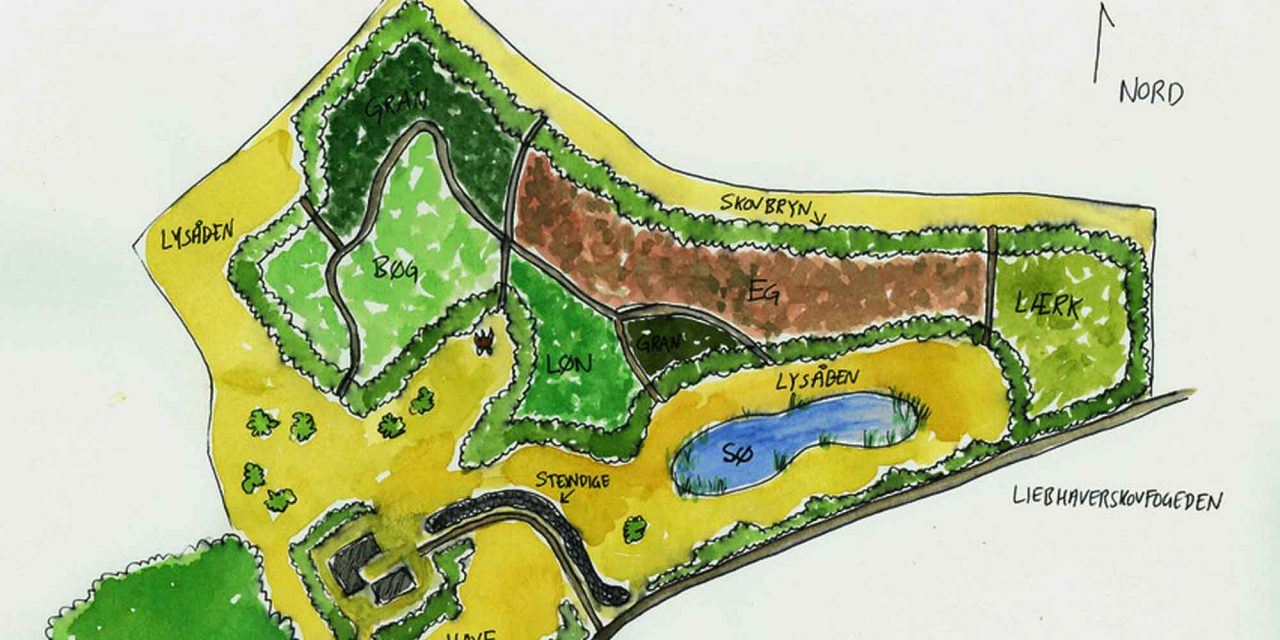 Masterplan forvandler bar mark til smuk natur