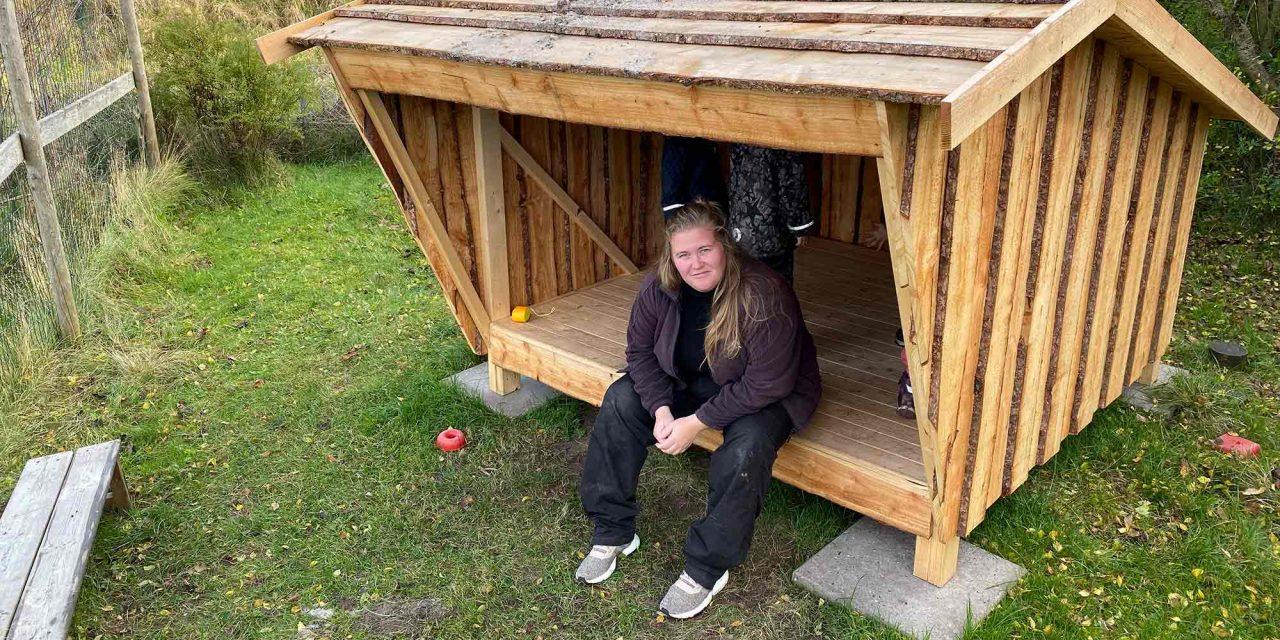 Jubiiii – Så er vinder-shelteret sat op på Børnehuset Bjerregravs legeplads